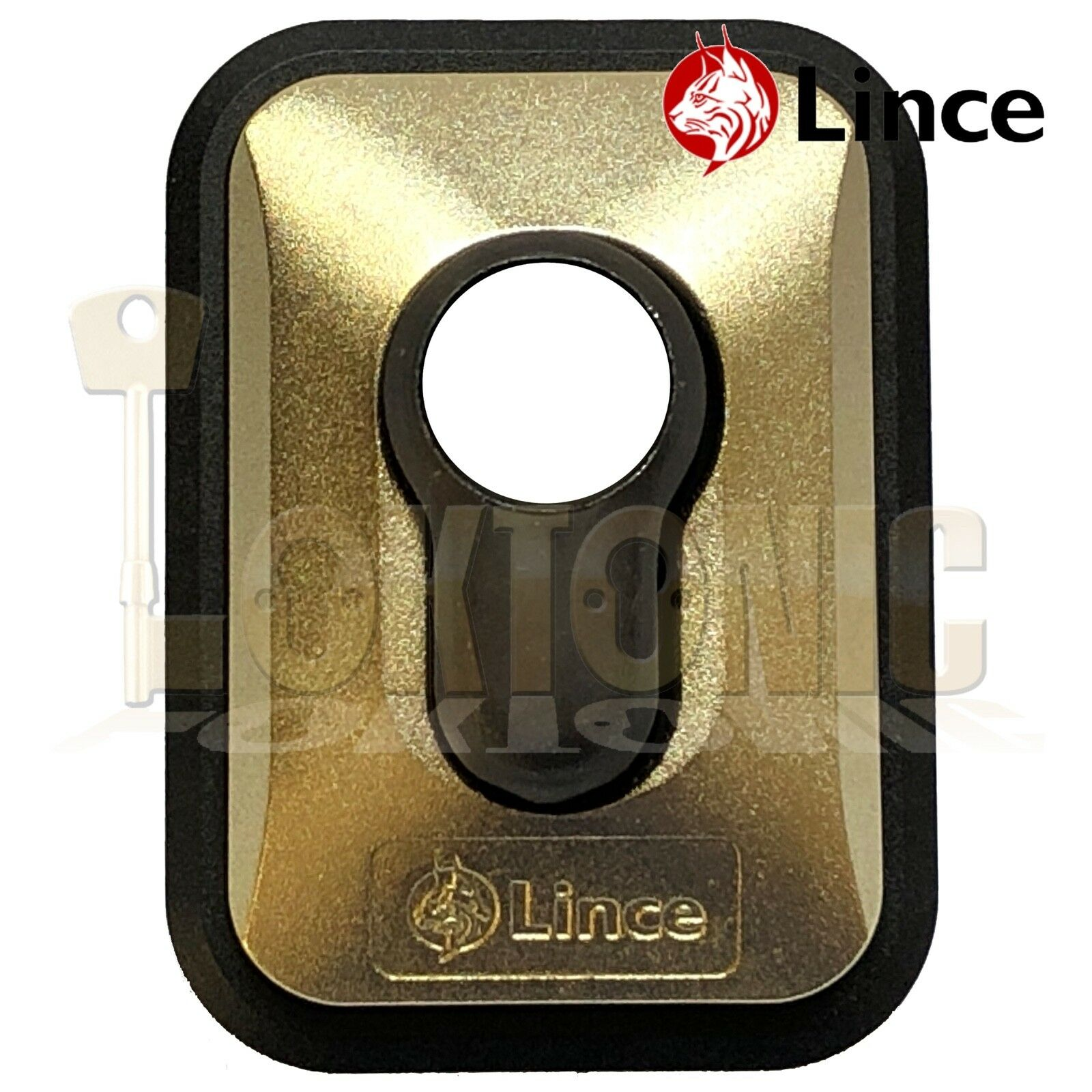 Lince Brass High Security Euro Cylinder Escutcheon Key